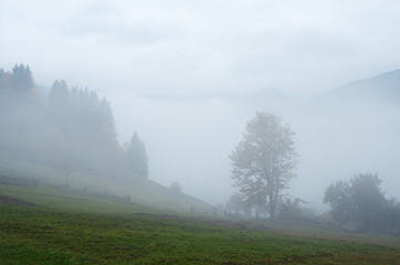 Autumn Landscape with fog in mountains