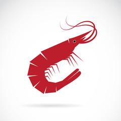 Vector image of an shrimp design on white background