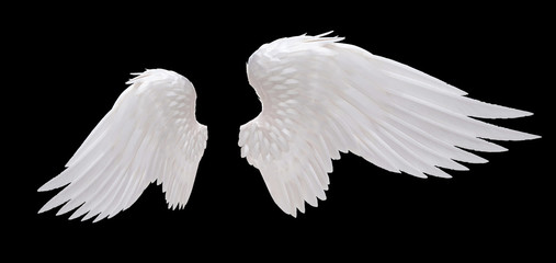 white angel wing isolated Wall mural