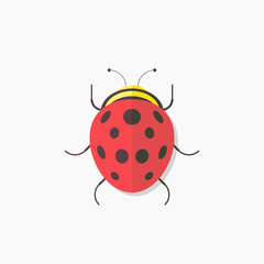 Ladybug, flat design, vector illustration