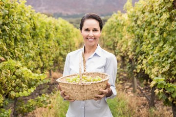 Smiling woman holding a basket on green grapes