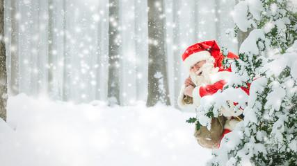 Weihnachtsmann im verschneiten Wald