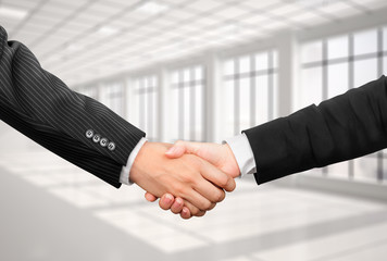 handshake businessman and business woman in the photo office