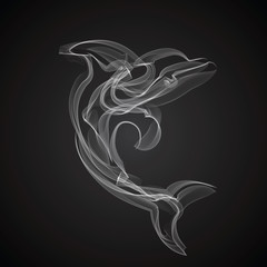 Dolphin vector silhouette on a black background.