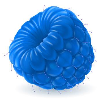 Blue raspberry over white
