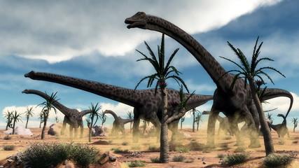 Diplodocus dinosaurs herd in the desert - 3D render