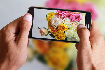 Male hand taking photo of colorful roses with cell, mobile phone.