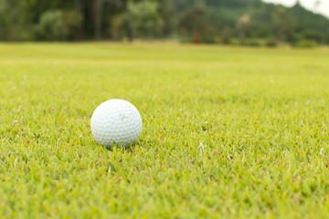 golf ball in fairway