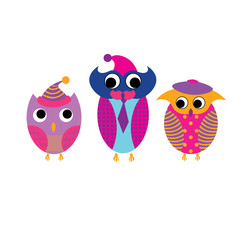 colorful owls vector cute funny print trend