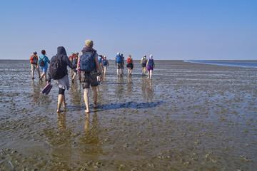 Wattwanderung einer Gruppe im Wattenmeer