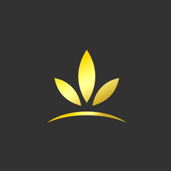 golden leaf beauty abstract logo