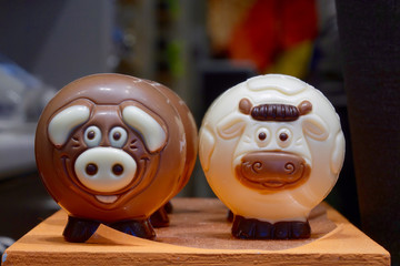 one brown chocolate porc and one white chocolate cow