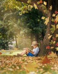 Boy readind under the big linden tree