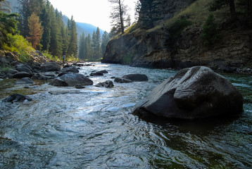 Photo sur Toile Riviere Gallatin River, Montana