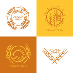 Set of vector linear wheat, fields logo design template.