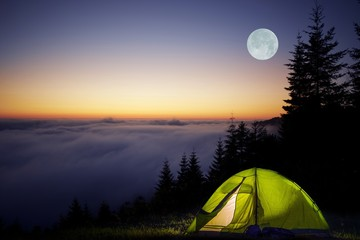 Wall Mural - Tent Camping in a Forest