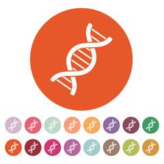 The dna icon. Genetics and medicine, molecule, chromosome,  biology symbol. Flat