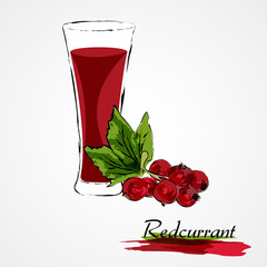 Hand drawn vector redcurrant fruit with leaf and juice in glass on light background