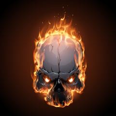 Skull in fire illustration