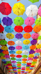 umbrella color explosion