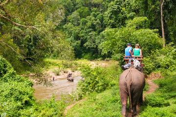 Elefantentour im Dschungel
