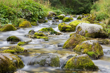 Mountain river with green rock