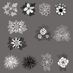 set of vector design of flowers