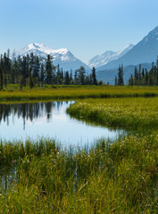 Acrylic Prints Mountains Flat Alaskan mountain stream
