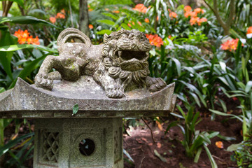 Fototapete - Foo Dog sculpture in Monte Palace Tropical Garden. Funchal, Madeira Island, Portugal