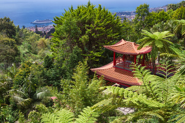 Fototapete - View of Tropical Garden and Funchal City in Monte Palace, Funchal, Madeira