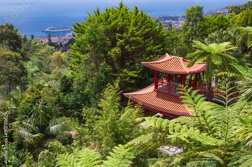 Fototapete View of Tropical Garden and Funchal City in Monte Palace, Funchal, Madeira