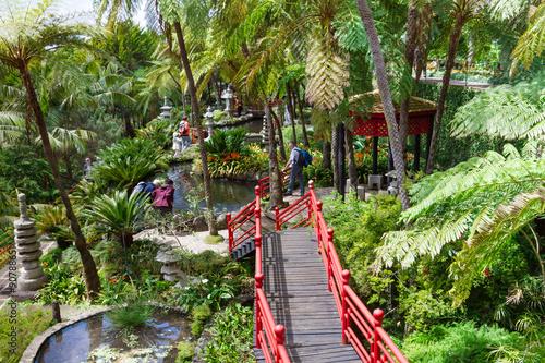 Fototapete Monte Palace Tropical Garden. Red bridges in oriental garden. Funchal, Madeira Island, Portugal