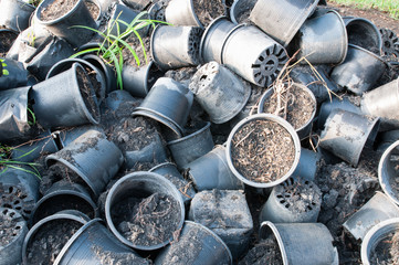 Plastic flower pots with ground soil
