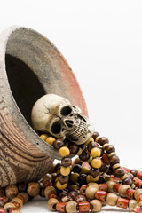 Skull model with Paternoster and pottery