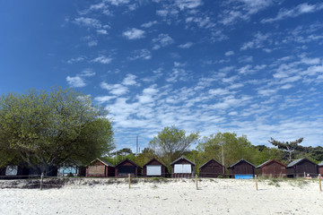 Hut and tree onBeach huts on Studland Bay in Dorset Studland Bay in Dorset
