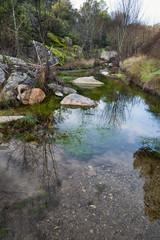 Arroyo de la Pizarra en la Sierra de Gredos. Cebreros. Avila