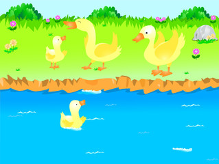 A picture of 4 ducks playing near a river. A duckling is swimming in the river.