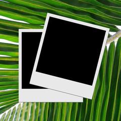 Photo frame on caribbean beach background