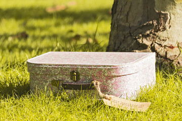 Beautiful vintage suitcase in autumn park