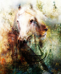 Horse and lion heads with one dollar collage. texture background