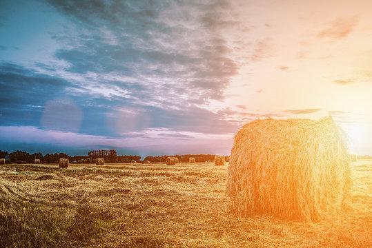 Haystack on an autumn field