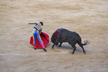 Bullfighter angers a bull
