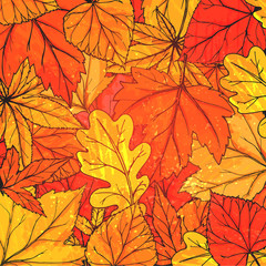 Autumn background with hand drawn golden leaves. Vector fall