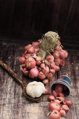 shallots and garlic on wood vintage