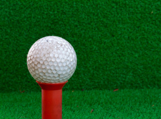 Golf ball,tee on the blur grass background.
