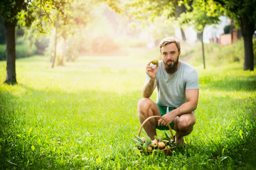 man with a basket of apples sitting on the grass in the park on a sunny green background
