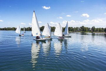 Foto op Aluminium Zeilen Sailing on the lake