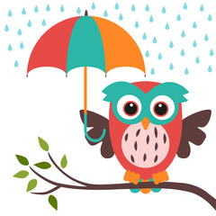 owl and umbrella rain