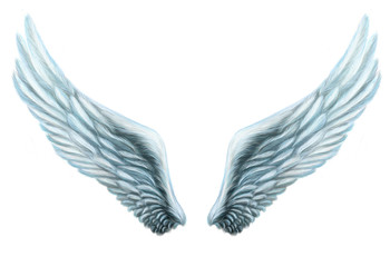 Angel wings. Internal white wing plumage. Isolation. fantasy