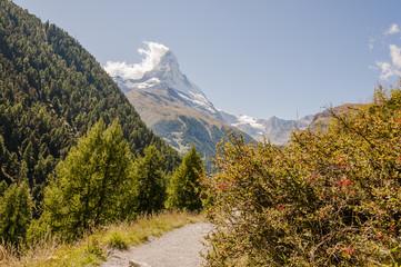 Zermatt, Dorf, Bergdorf, Alpen, Walliser Alpen, Schweizer Berge, Findeln, Sunnegga, Wanderweg, Findelschlucht, Findelbach, Weiler, Alm, Wallis, Sommer, Schweiz